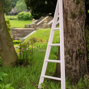 Small Wooden Orchard Ladder painted in Cuprinol Sweet Pea