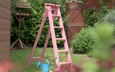 Yes, Pink Ladders